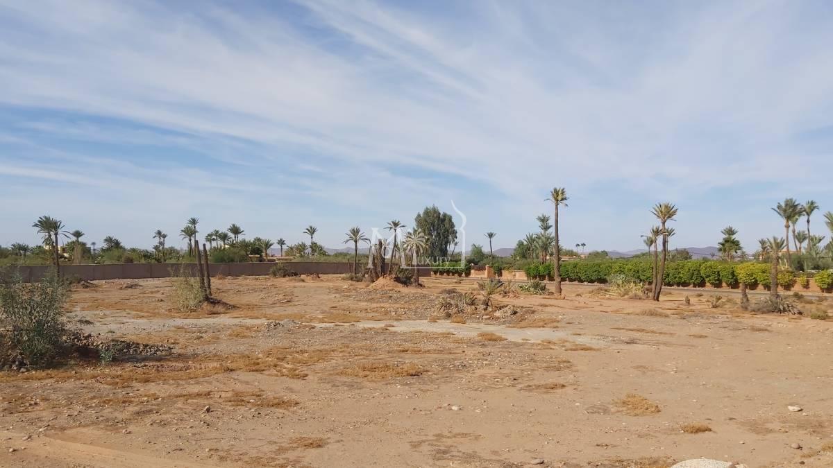 Magnifique terrain à vendre Palmeraie